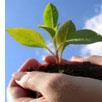 forrásteremtés természet, környezet védelemre