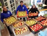 Almát, gombát, csokit, mézet, tartós élelmiszert kaptak nélkülözők