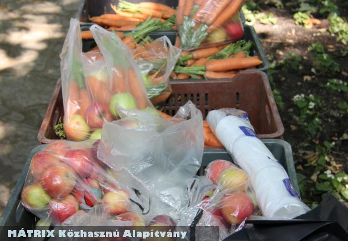 Gyümölcsosztás a MÁTRIX Közhasznú Alapítvány városszépítõ programján