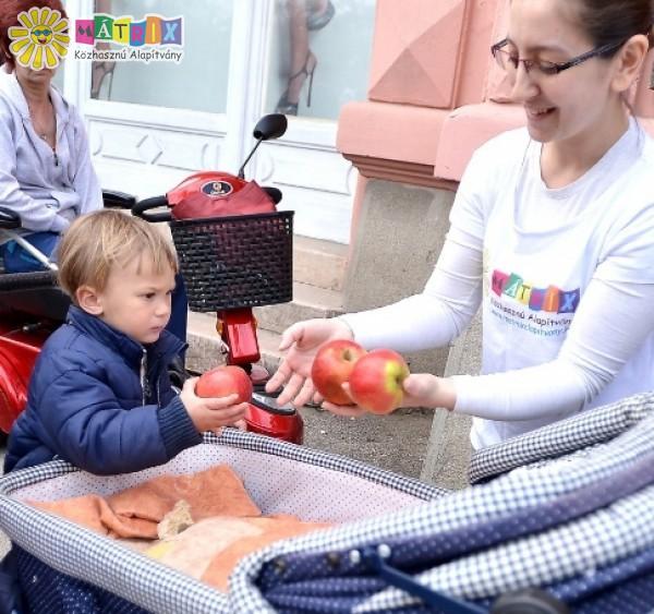 Gyümölcs és élelmiszek, családtámogatás