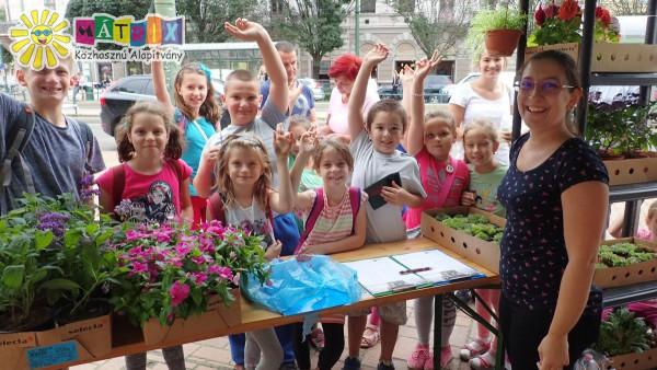 Virágosztás: ezer családdal szépítettük a környezetünket