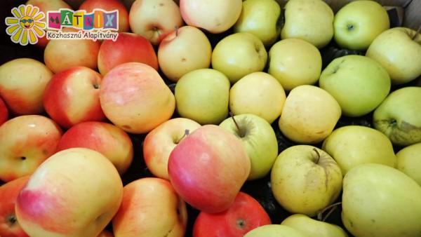 Gyümölcs adomány
