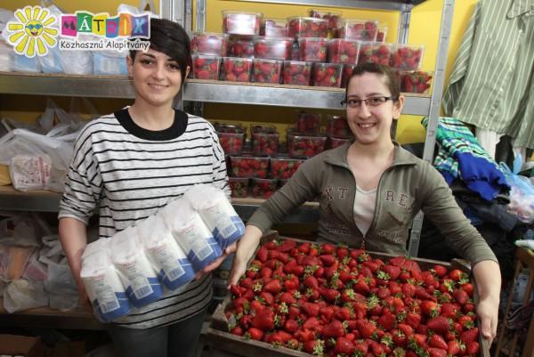 Élelemosztás, gyümölcsosztás, családtámogatás