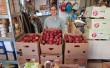 Egész évben alma, vitamindús gyümölcs osztás