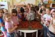 Vitaminnapot tartottunk ovis gyerekeknek